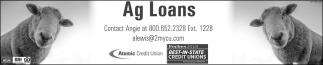 Ag Loans