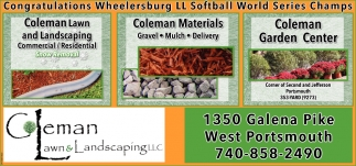 Congratulations Wheelersburg LL Softball World Series Champs